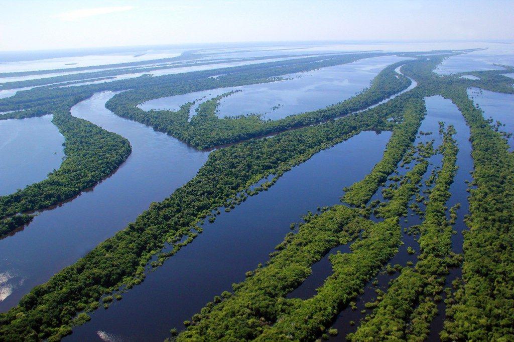 Conheça Manaus