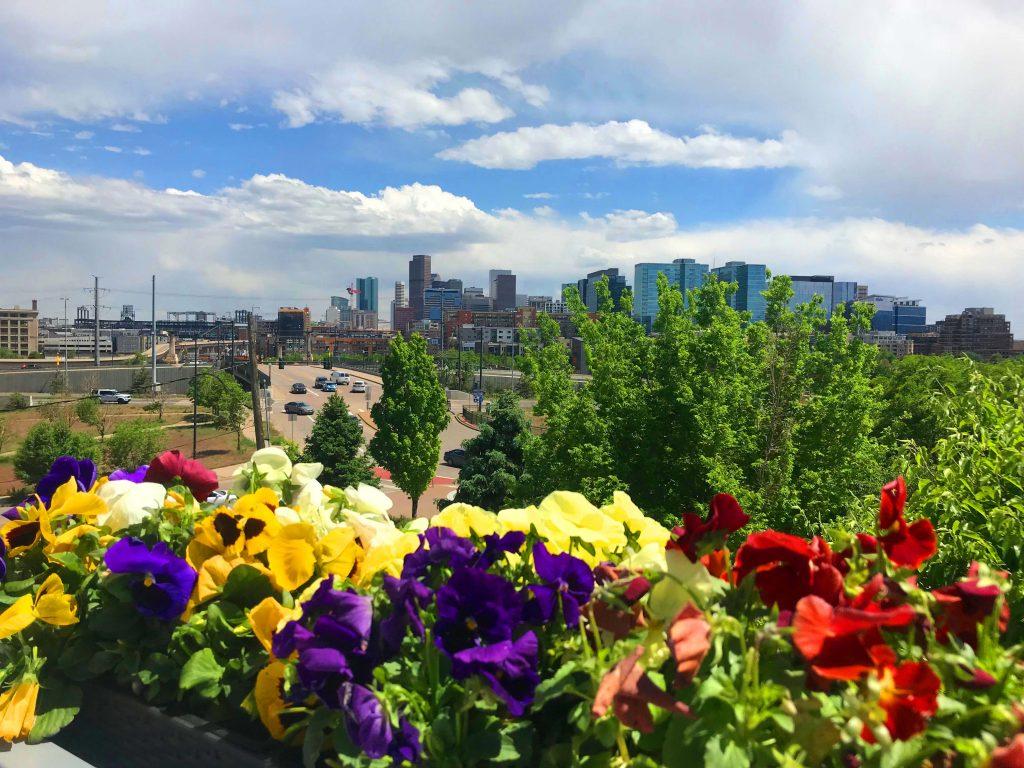 O que fazer em Denver - cidade
