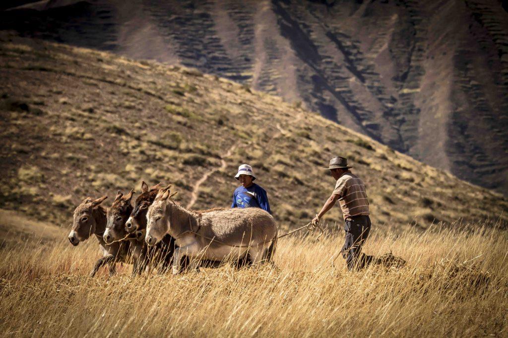 Turismo Rural no Peru