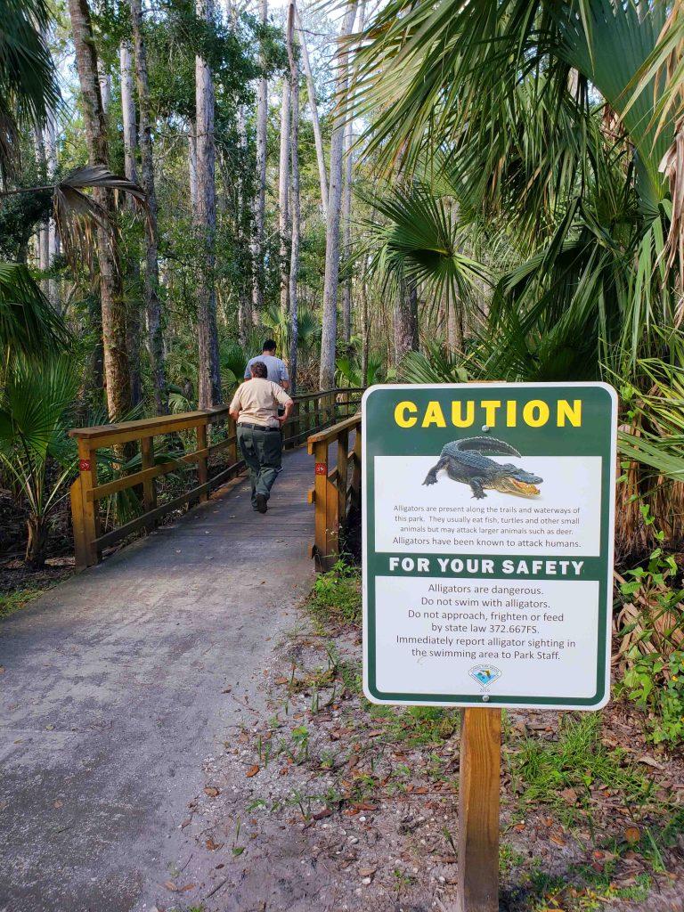 Conheça a Flórida em uma road trip - Highlands Hammock State Park