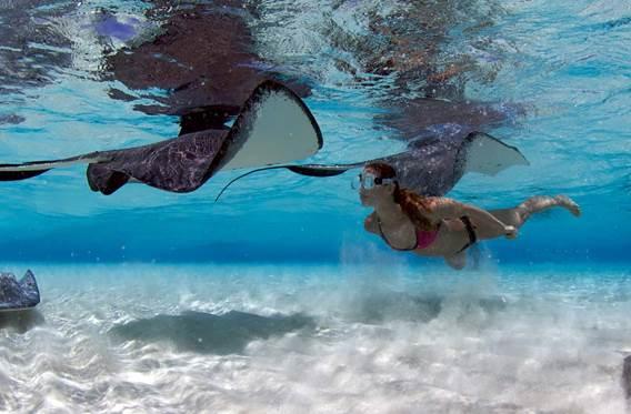 Ilhas Cayman; Cidade das Arraias